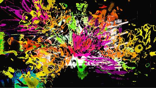Flowerexplosionneon