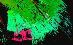 Btflywinggreen