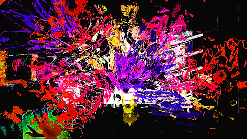 Flowerexplosionwild