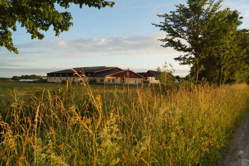 Vallbys Ängsgård