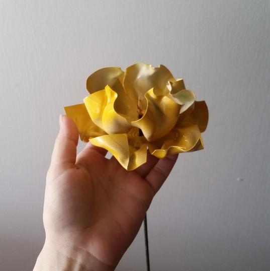 Single yellow soda bottle flower
