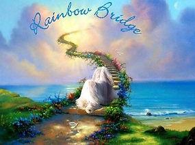 Rainbowbridge.jpg
