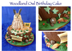 Woodland Owl Birthday Cake