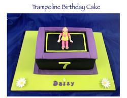 Trampoline Cake (Daisy)