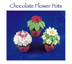 Chocolate Flower Pots