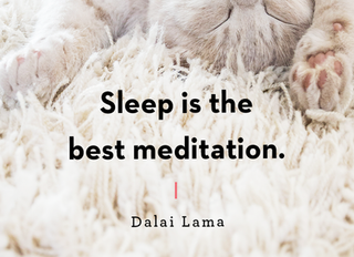 On the Importance of Sleep