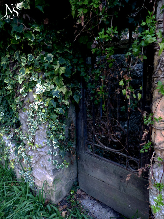 The secret garden door ❉ La porte du jardin secret