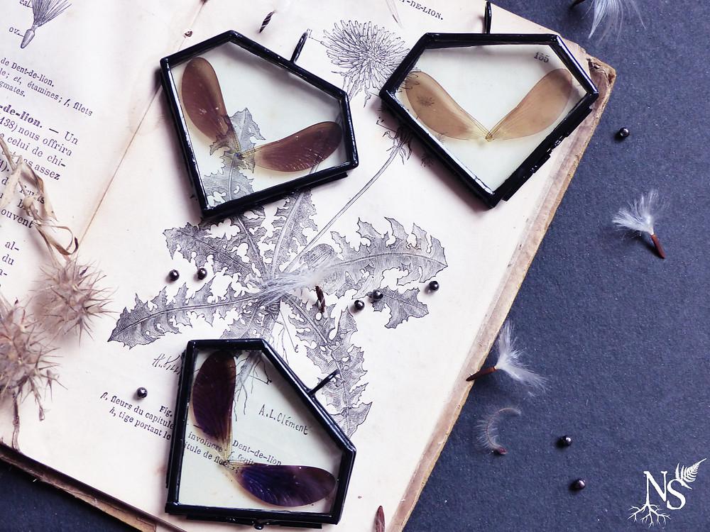 3 médaillons en verre contenant des paires d'ailes de libellule