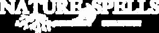 logo-punchline2-blanc-fond-transp.png