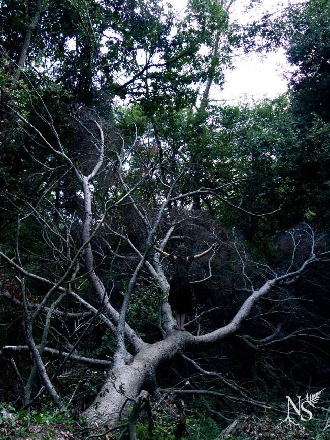 une prêtresse lève les bras au ciel debout sur un arbre couché