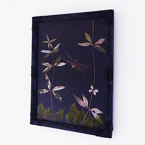 Dragonfly wings, wild madder and moss displayed in a witchy frame.