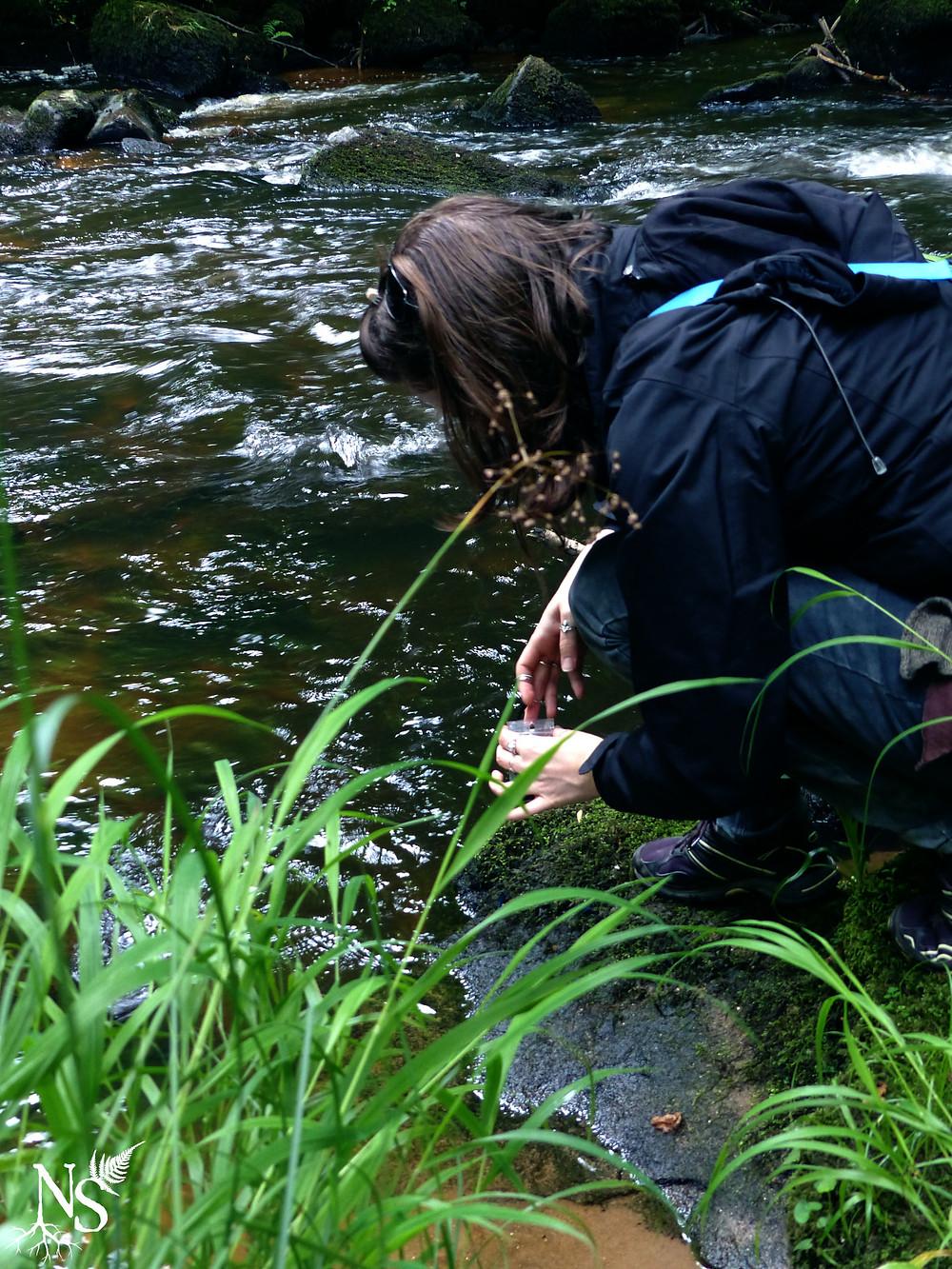 une femme ramassant des ailes de libellule au bord de la rivière