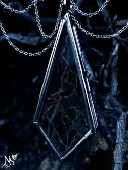 Root medallion ❉ Médaillon de racines