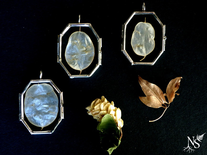 lunaria layers in glass lockets