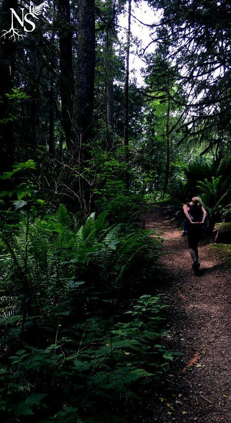 Une femme se promène dans une forêt au sous-bois luxuriant avec un bébé en portage dans le dos.