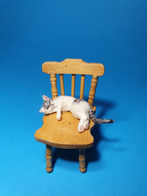 One of a kind miniature white tabby cat