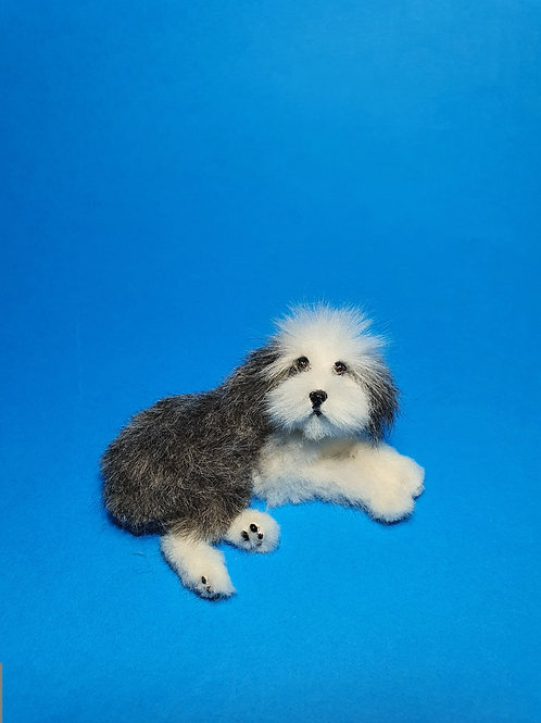 One of a kind miniature Old English Sheepdog