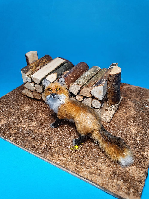 One of a kind miniature fox