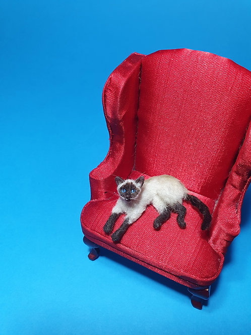 One of a kind miniature siamese cat