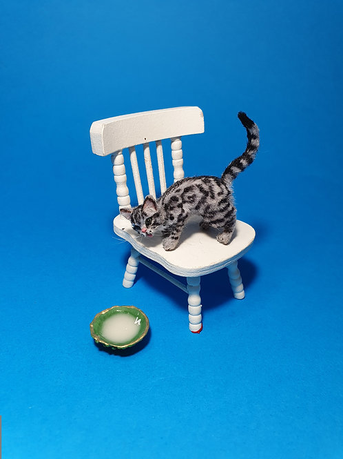 One of a kind miniature drinking tabby cat