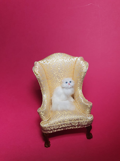 One of a kind miniature Persian cat