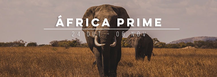 banner-site-AFRICA.jpg
