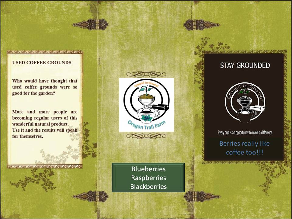 Flyer for coffee shops