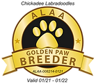 Chickadee GOLDEN PAW 2021.png