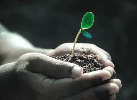 Spočítejte si svoji ekologickou stopu