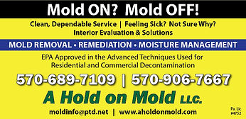 A-Hold-on-Mold.jpg