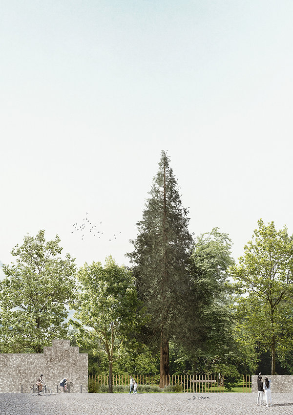 Botanischer-Garten_MANN_Schnittansicht-5