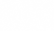 Background_feuilles-blanc-01.png