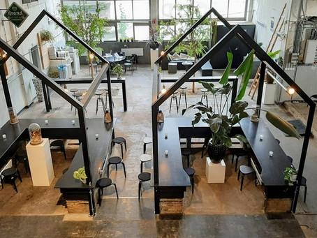 Phood kitchen - Bringing nature to the city