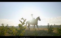 Screen Shot 2020-10-07 at 10.16.40 PM.pn