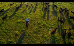 Screen Shot 2020-10-07 at 9.09.40 PM.png
