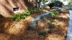 low maintenance landscape design with ga