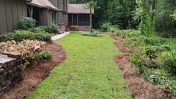 backyard new sod in summerville