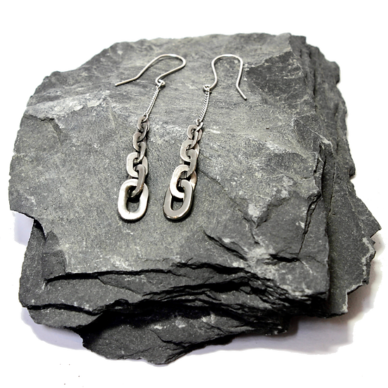 Stainless Steel Graduated Flat Chain Earrings