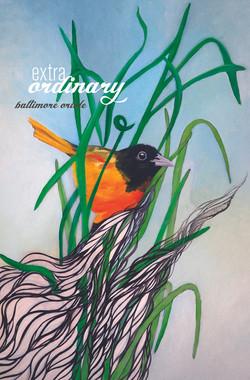 ExtraOrdinary Birds