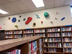 Library Installation