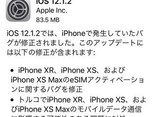 iOS更新待った!