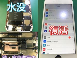 iPhone6s 水没対応