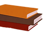 Pile%20of%20Books_edited.png