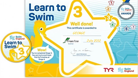 stage three badge and certificate pic.pn