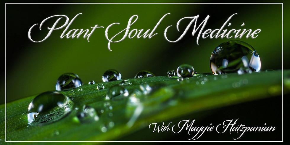 Plant Soul Medicine with Maggie Hatzpanian (1)