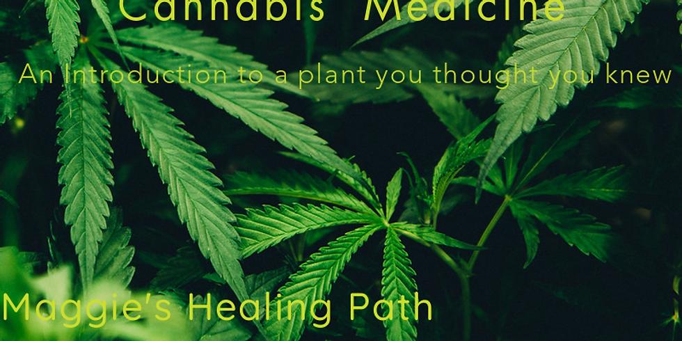 Intro to Medicinal Cannabis