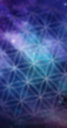 new web banner just flower.png