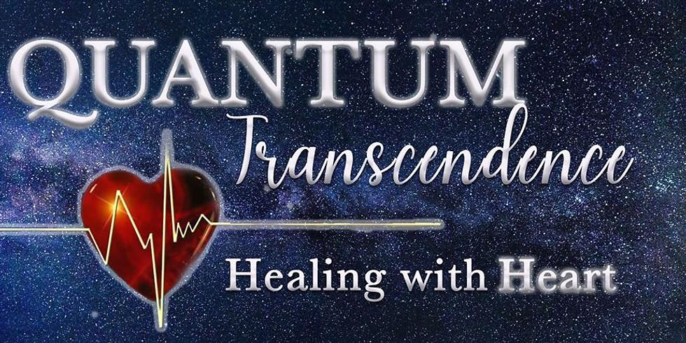 Quantum Transcendence Group Meeting