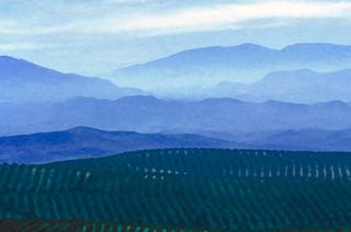 Looking toward Granada