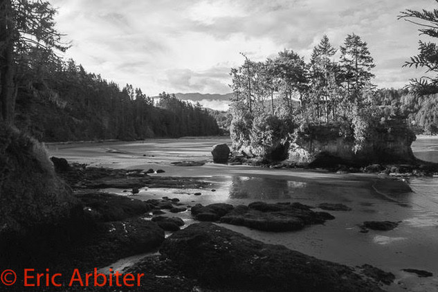 Island at low tide, Olympic National Park